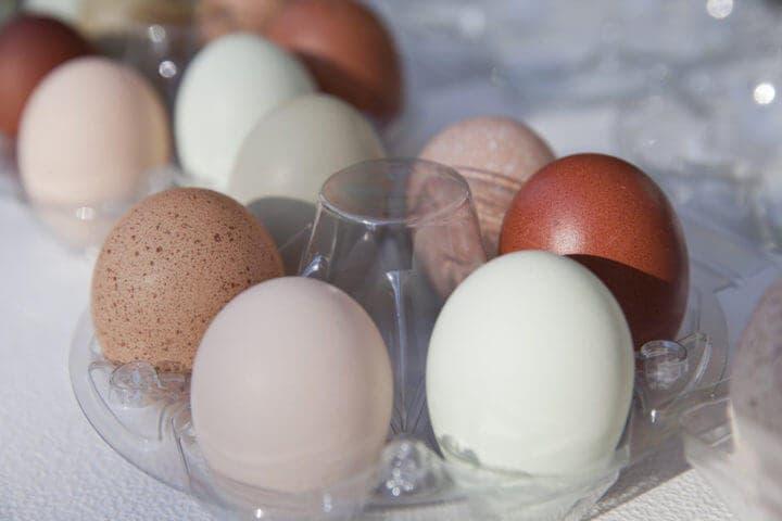 ¿Qué categorías de huevos hay?
