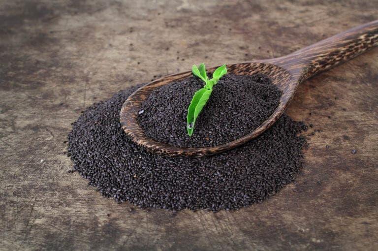 6 beneficios de las semillas de albahaca para la salud