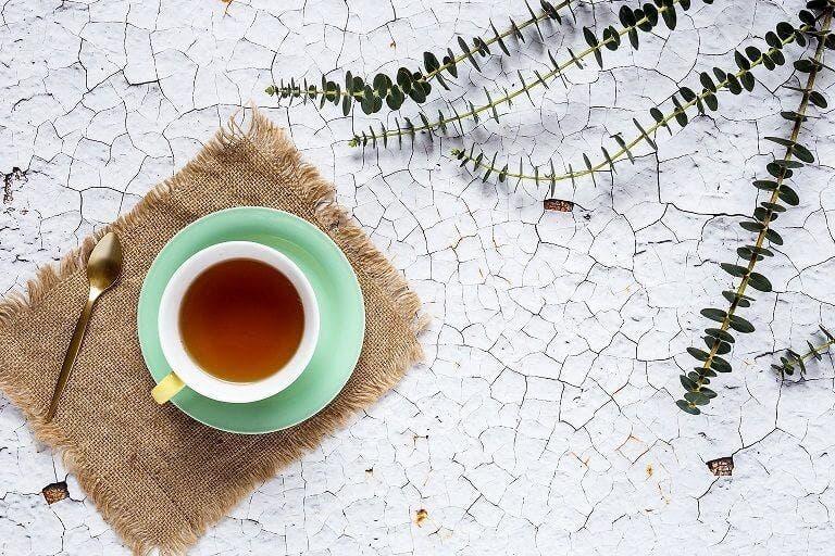 Propiedades del té de sasafrás