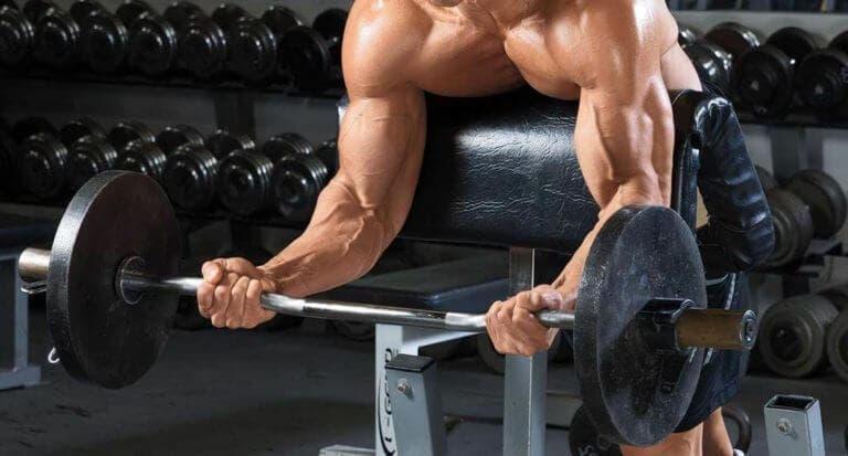 Guía para el entrenamiento de bíceps