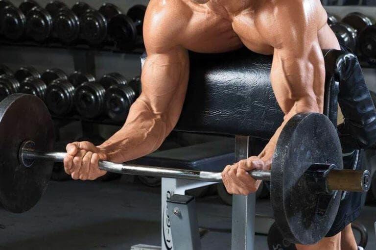 La guía definitiva para entrenar el bíceps