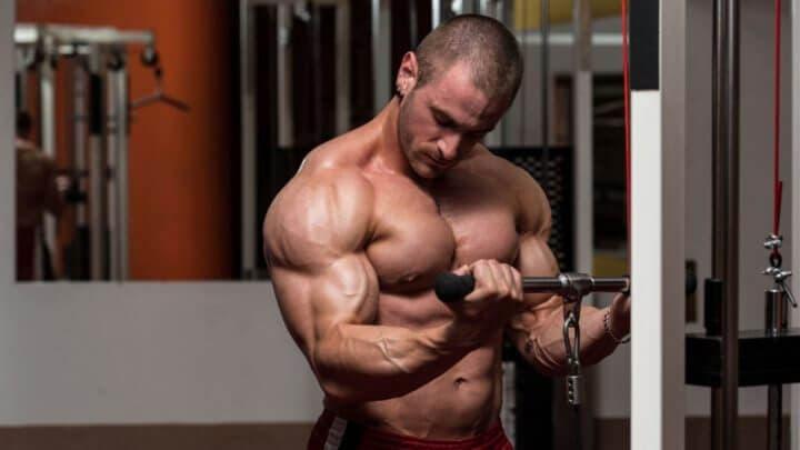 Tamaño muscular del bíceps al entrenar