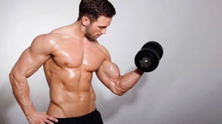 Factores que afectan el crecimiento de los bíceps