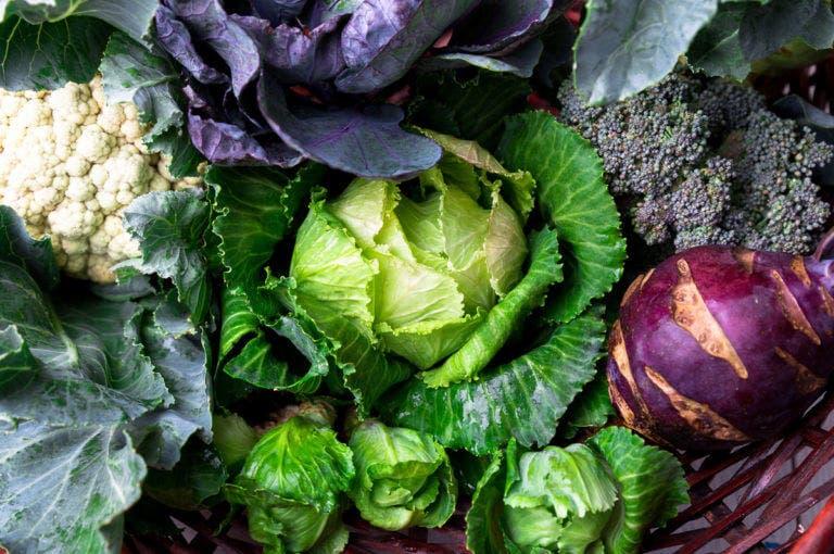 ¿por qué es saludable comer verduras crucíferas?