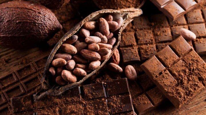 La epicatequina del chocolate mejora la resistencia