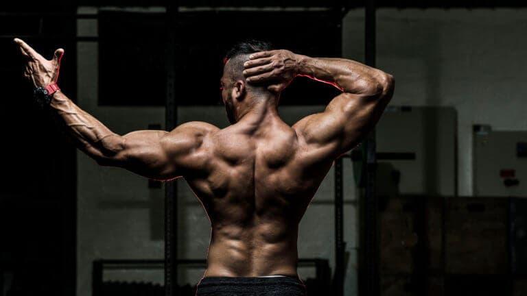 Ejercicios para conseguir espalda en forma de V