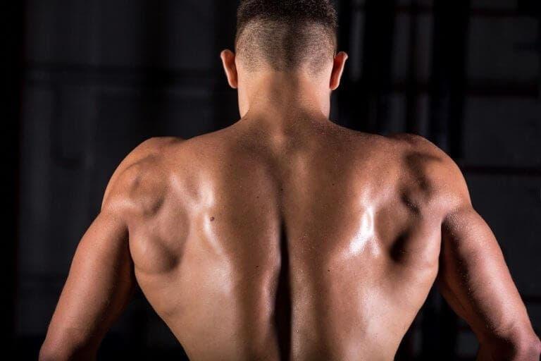 Cómo entrenar el dorsal ancho