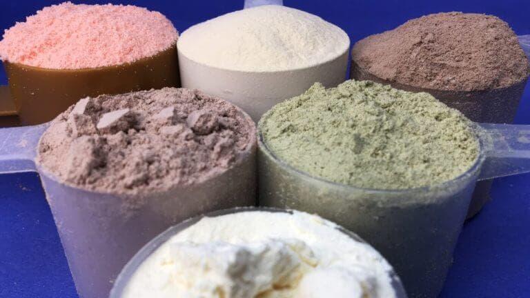 Diferencias entre el polvo de proteína vegetal y animal