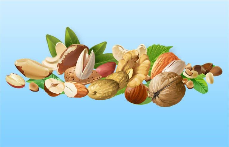 Alimentos saludables altos en omega 6