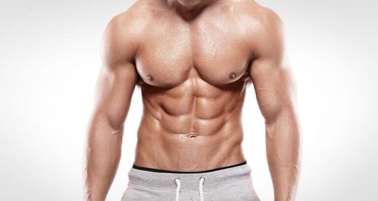 ¿Cuales son los mejores ejercicios para pectorales?