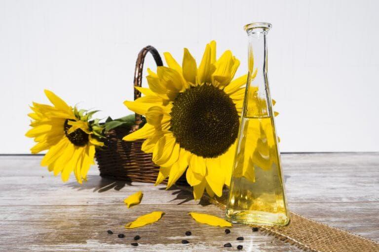 ¿Es saludable el aceite de girasol para tu dieta?