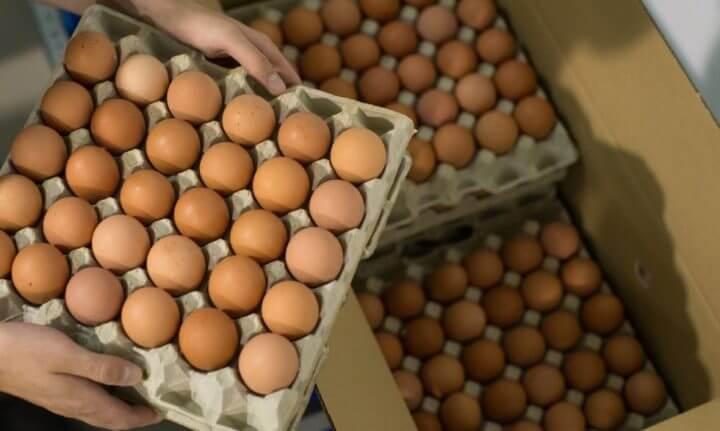 Es posible congelar los huevos?