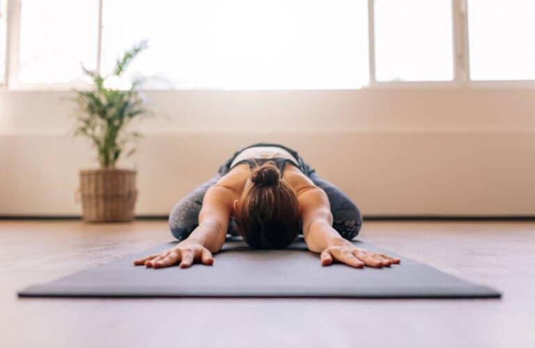 Rutinas para yoga en casa