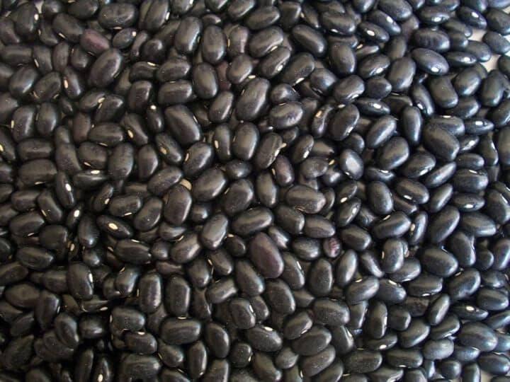 Consumir frijoles negros reduce el riesgo de padecer diabetes