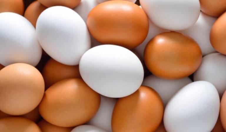 ¿Se pueden congelar huevos?