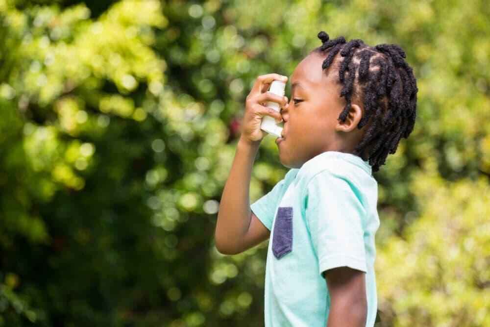 Él avena puede prevenir el asma infantil