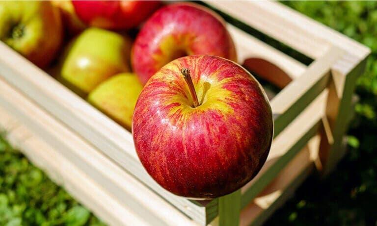 Todos los beneficios que aportan las manzanas si las incluyes en tu dieta