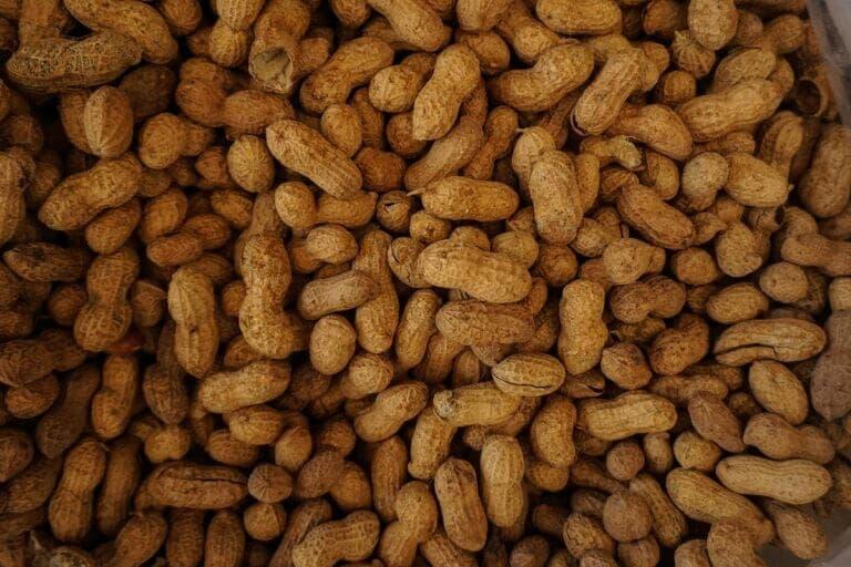 Todos los beneficios que aporta consumir cacahuates