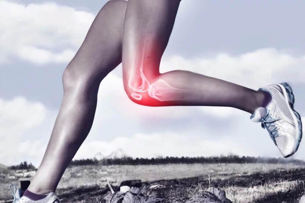 Cómo mantener saludables y fortalecer las articulaciones