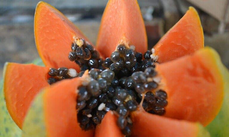 Todos los beneficios que aporta la papaya si la consumes a diario