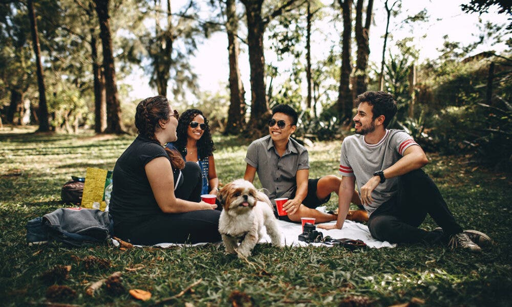 Consejos para estar saludable internamente: socializar, una forma eficaz de mejorar tu estado anímico.