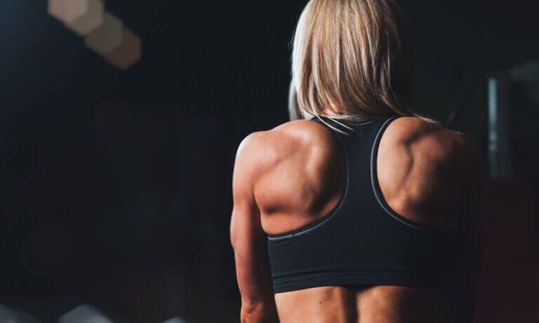 Mejores ejercicios de hombros que puedes hacer en casa