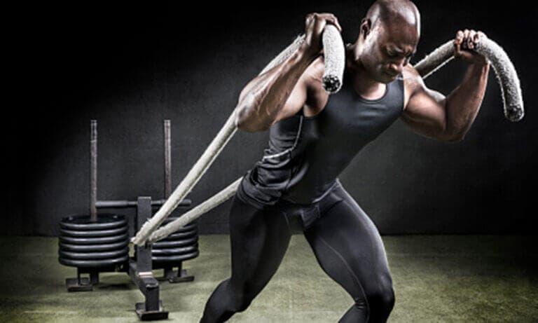 Mejores ejercicios que puedes hacer con trineo de empuje