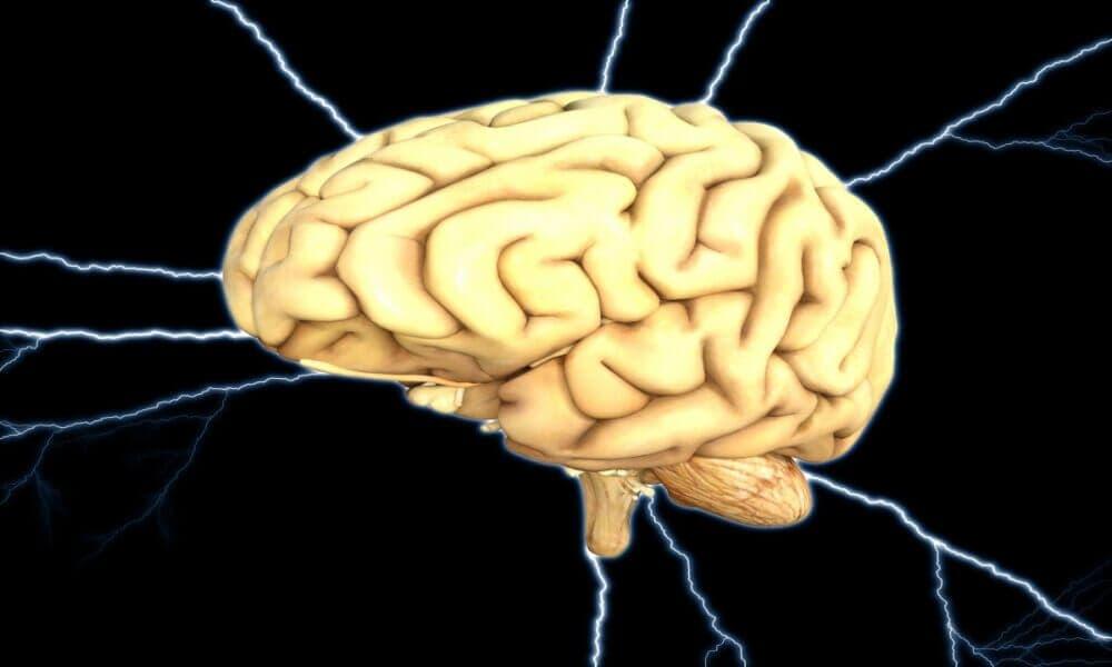 ¿Qué es la fatiga del sistema nervioso central y cómo se produce?