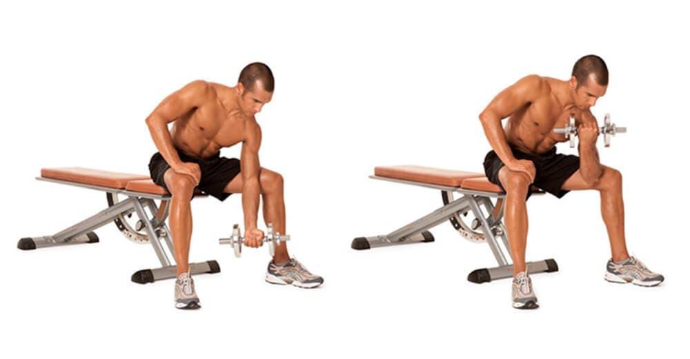 Ejercicios para fortalecer bíceps rápidamente