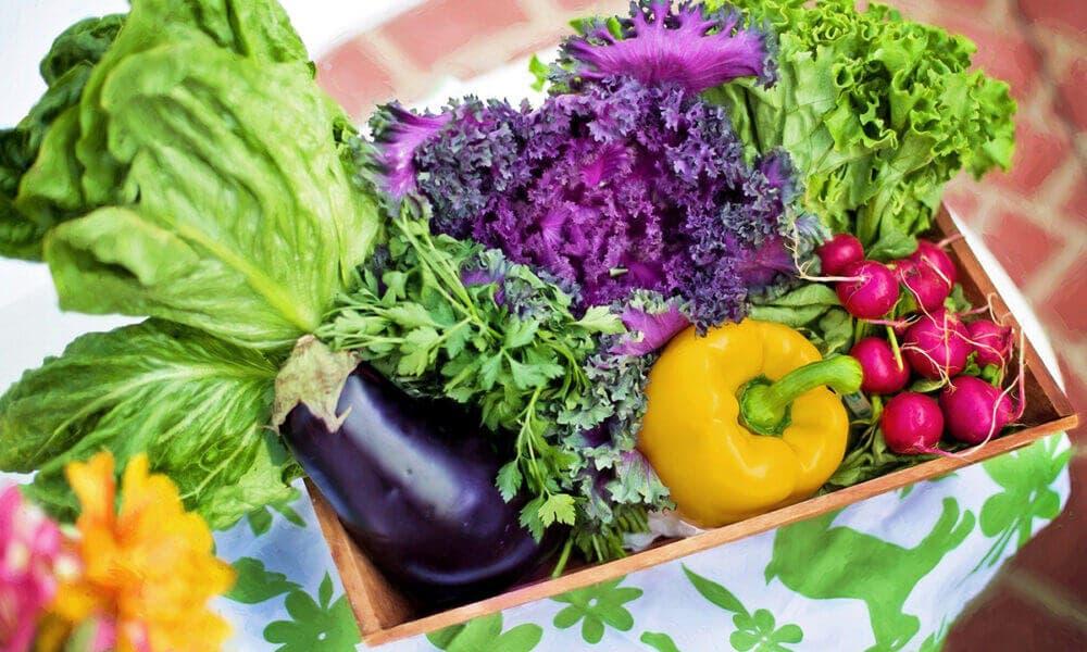 Mejoras en la salud cardiovascular gracias a las propiedades de las frutas y hortalizas crudas