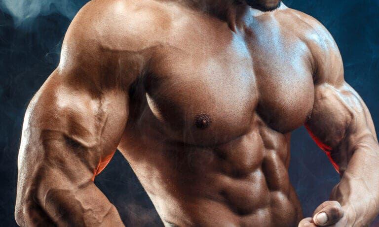 Ejercicios con mancuernas y barra para bíceps