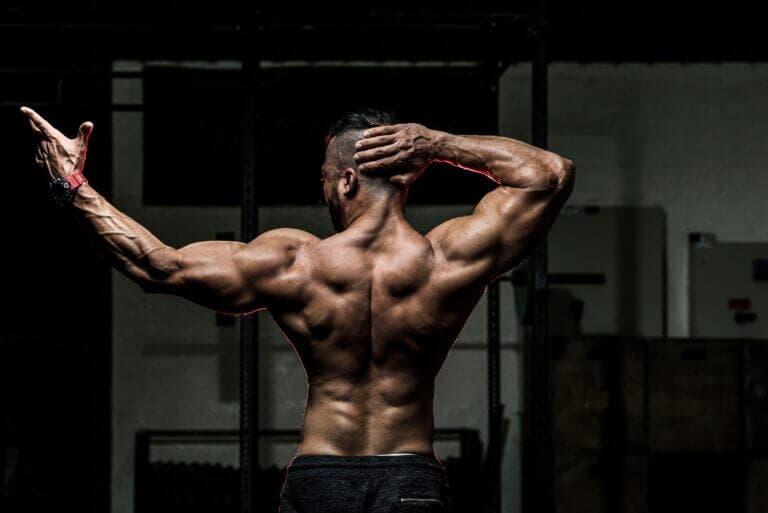 Ensanchar la espalda