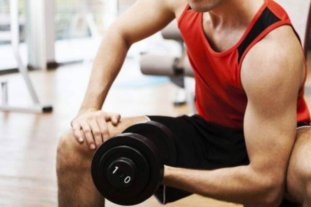 musculación y creatina