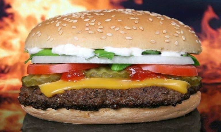 Pan de hamburguesa thermomix